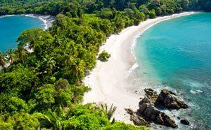 hav med dejligt blå grønt vand og palmer