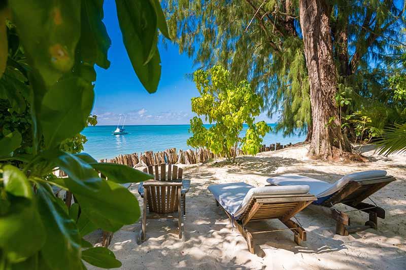Dejlig strand med palmer sand og vand på Denis Island